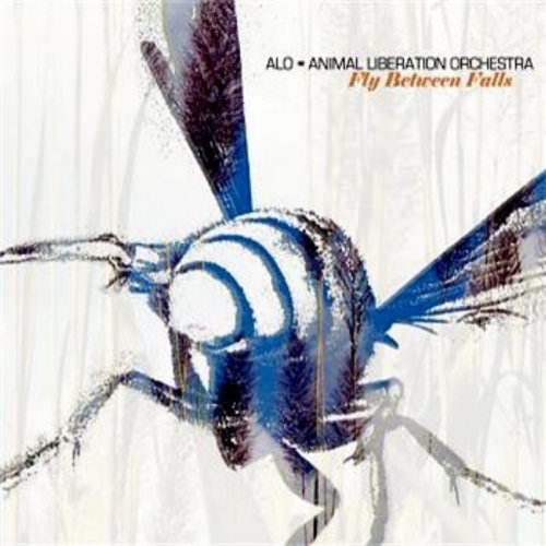 Animal Liberation Orchestra - Fly Lyrics