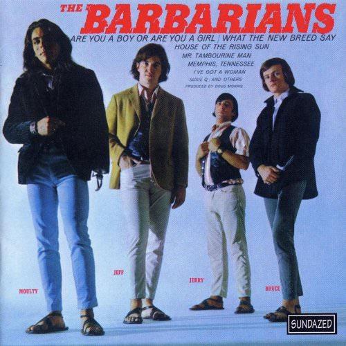The Barbarians - Mr. Tambourine Man Lyrics