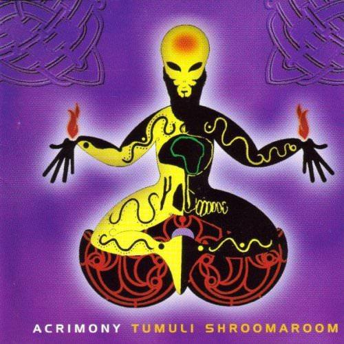 Acrimony - Million Year Summer Lyrics