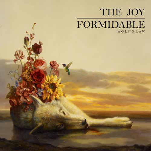 The Joy Formidable - The Leopard And The Lung Lyrics