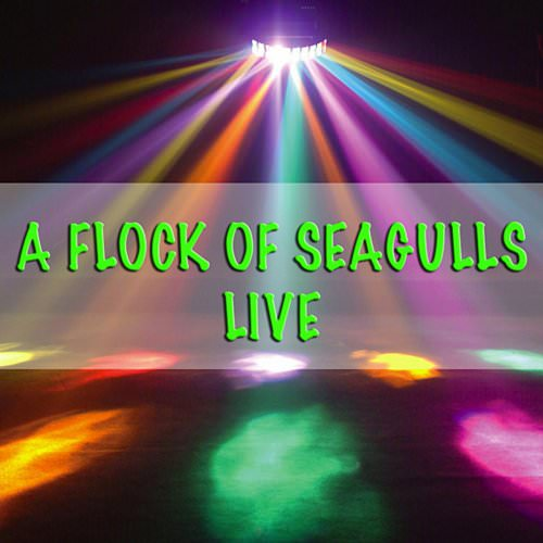 A Flock Of Seagulls - Standing In The Doorway (Live) Lyrics