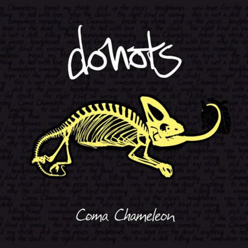Donots - To Hell With Love Lyrics