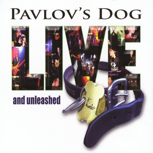 Pavlov's Dog - Theme From Subway Sue (Live) Lyrics