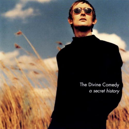 The Divine Comedy - I've Been To A Marvellous Party Lyrics