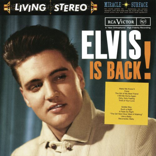 Elvis Presley - Fame And Fortune Lyrics
