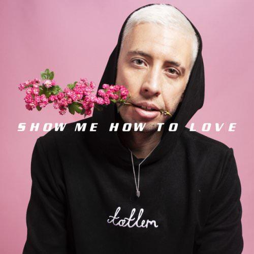 Example Feat. Hayla - Show Me How To Love Lyrics