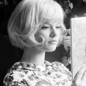 Sylvie Vartan - Le Temps De L'amour Lyrics