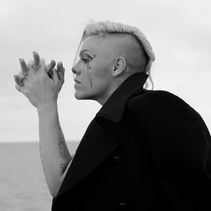 P!Nk - The Truth About Love (Commentary) Lyrics